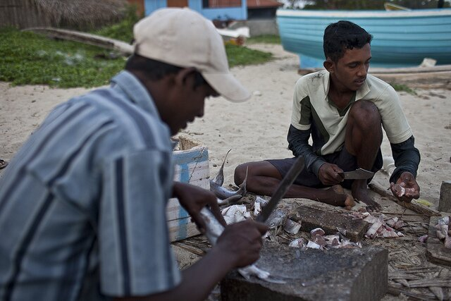 sri-lankan-fishers